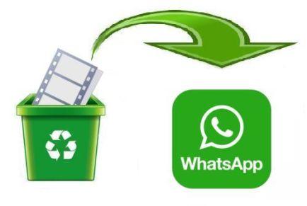 Как в Ватсапе восстановить удаленные фото и видео файлы