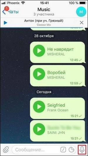Запись ГС