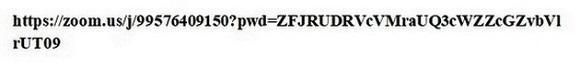Как выглядит ссылка при нажатии на копировать ссылку приглашения