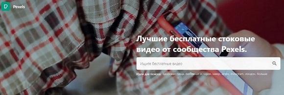Сайт pexels с подборкой видеоподложек